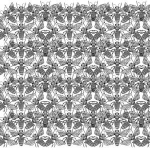print graphic insecte