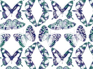 graphisme textile butterfly