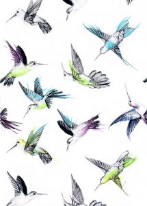 all-over-colibri-crayon